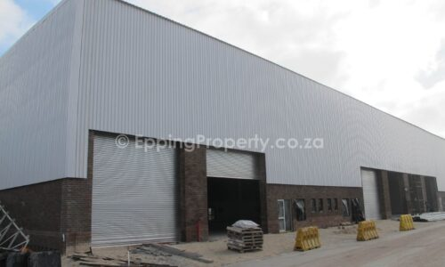 Warehouse for Rent in Bellville